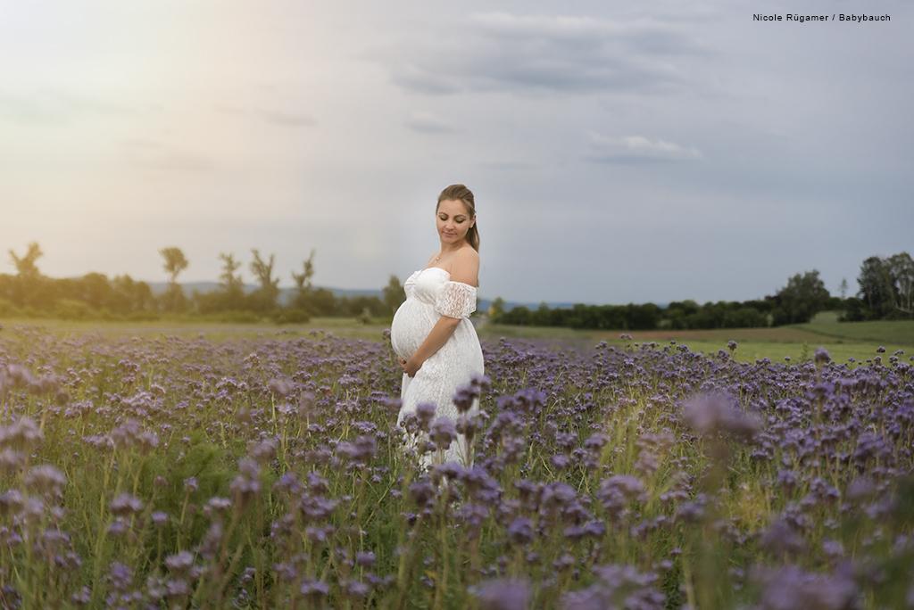 Schwangere Frau im weißen Kleid in einem Feld aus Kornblumen und Sonnenuntergang